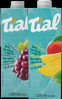 Néctar Tial – TP 1L